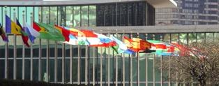 VN vlaggen klein